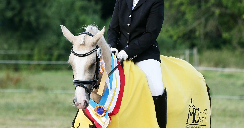 Ausbildung und Beritt junger Ponys