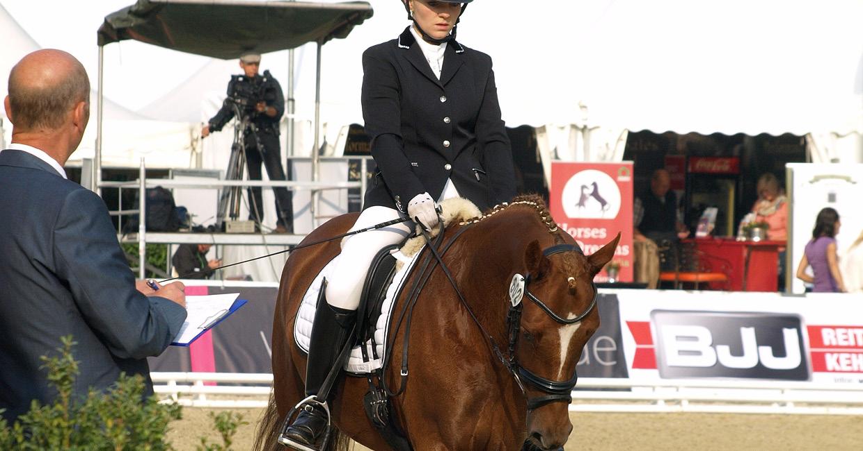 Turniervorstellung von Ponys von Reitpferde bis Bundeschampionat
