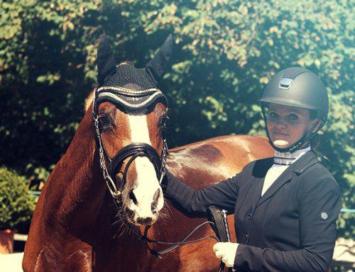 Amarula Kiss platziert sich in der Dressurpferdeprüfung Kl. A in Marne